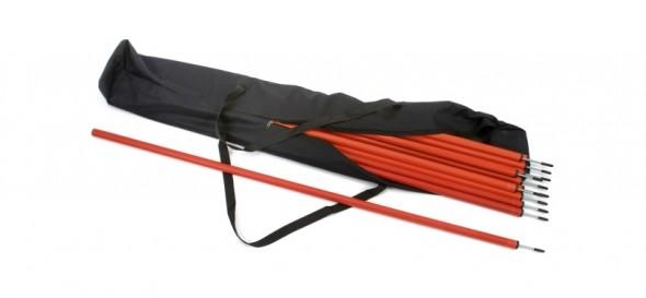 slalom poles