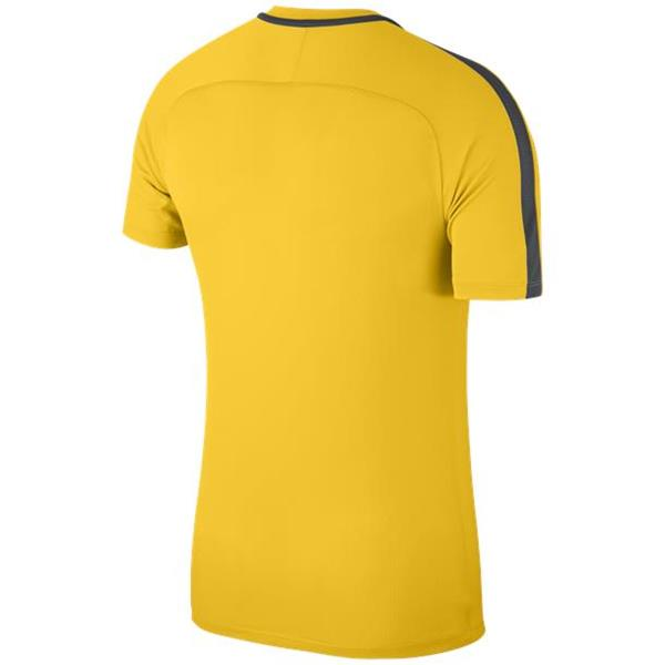 Nike Academy 18 Training Top Tour Yellow/Anthracite