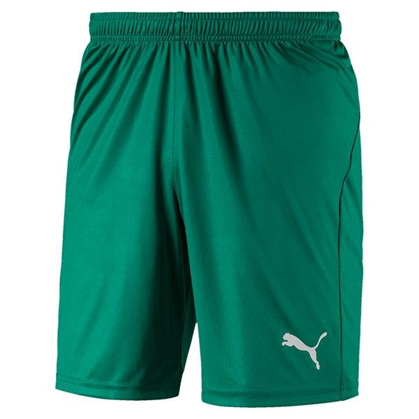 Puma Liga Core Football Shorts Pepper Green/White