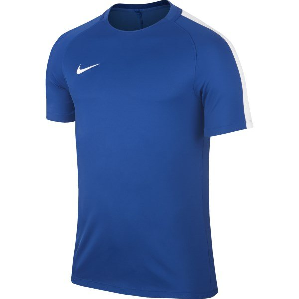 Nike Squad 17 Royal Blue/White Training Top