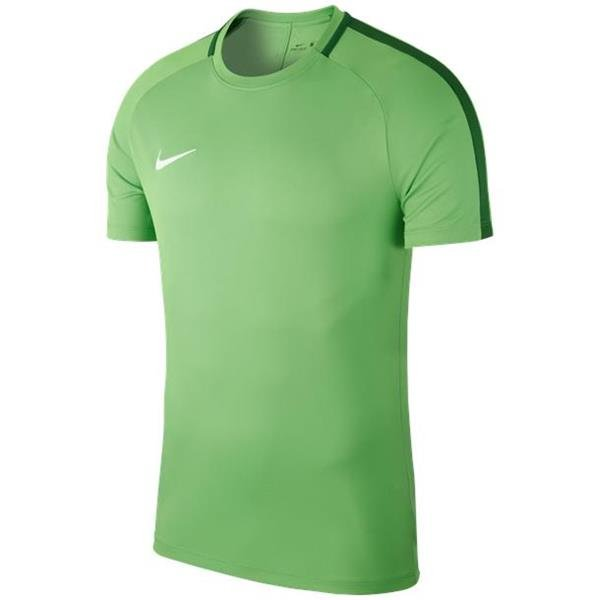 Nike Academy 18 Training Top Green Spark/Pine Green