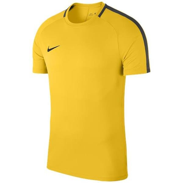 Nike Academy 18 Training Top Tour Yellow/Anthracite Youths