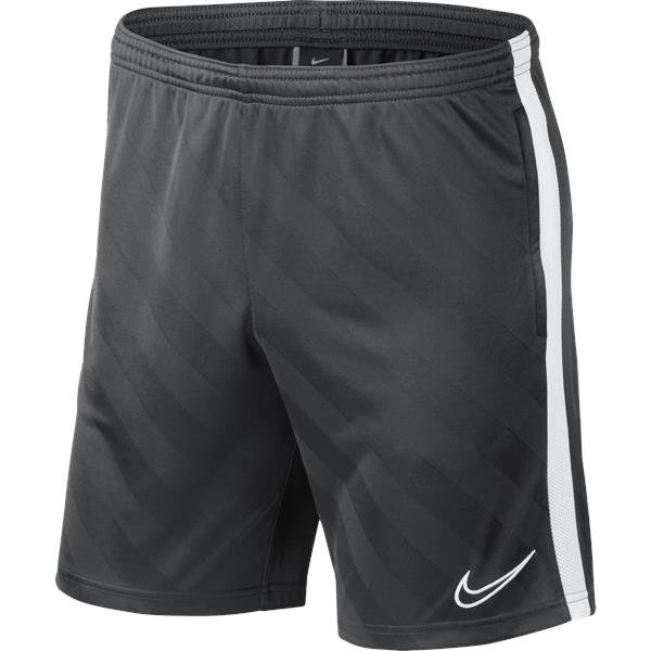 Nike Academy 19 Short Anthracite/White Youths