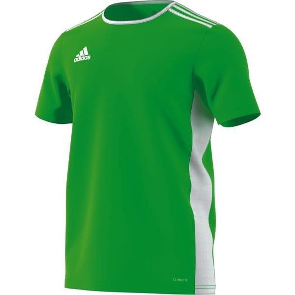 adidas Entrada 18 Solar Green/White Football Shirt