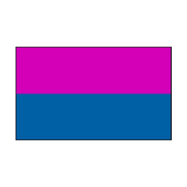 2 Colour Corner Flags Blue/Pink