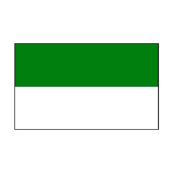 2 Colour Corner Flags Green/White
